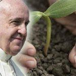 espiritualidad-franciscana-en-la-enciclica-papal